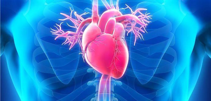 Compresor de genes de anticuerpos: reumatismo del corazón, ¿cuáles son los síntomas y el tratamiento?