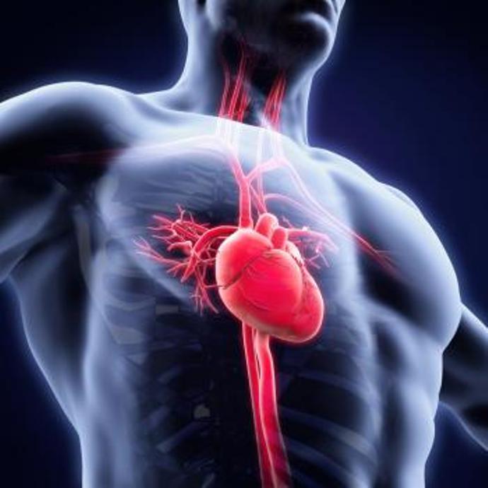 симптомы ревматизма сердца
