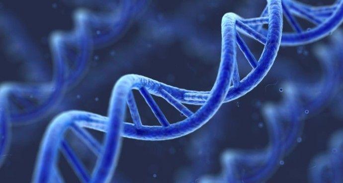 ревматоидный артрит по наследству